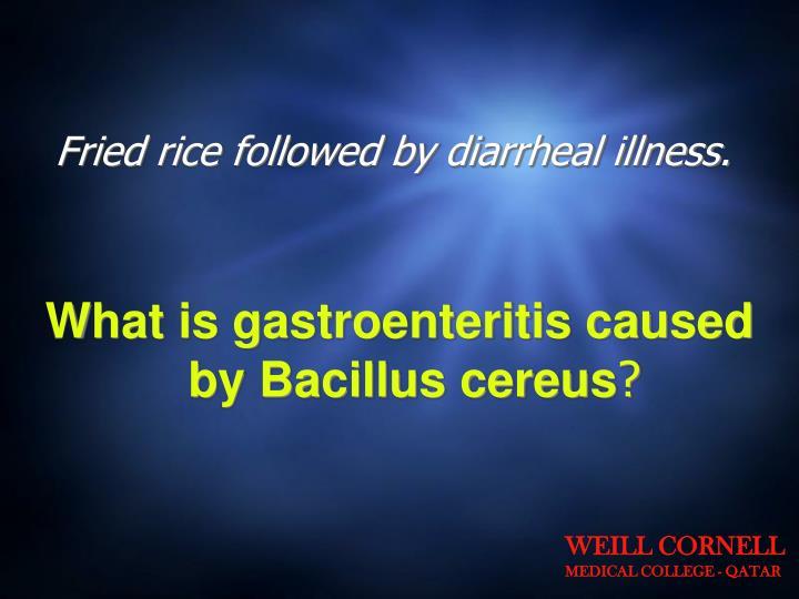 Fried rice followed by diarrheal illness.
