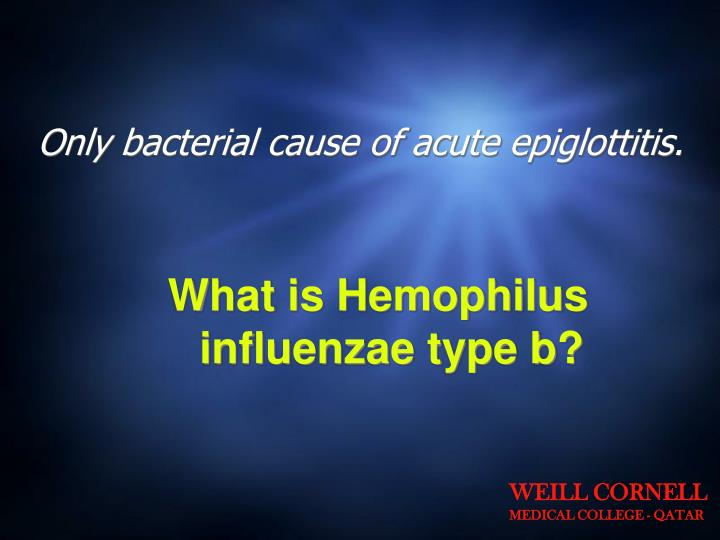 Only bacterial cause of acute epiglottitis.