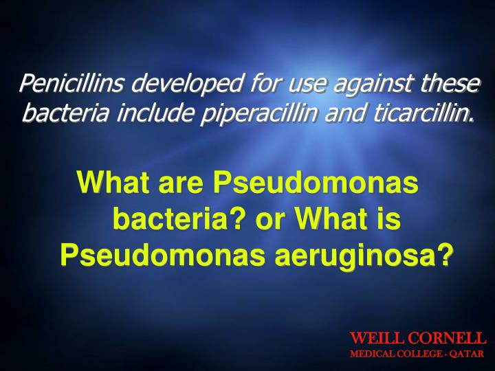 Penicillins developed for use against these bacteria include piperacillin and ticarcillin.