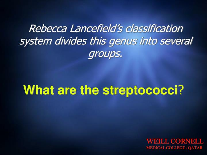 Rebecca Lancefield's classification system divides this genus into several groups.