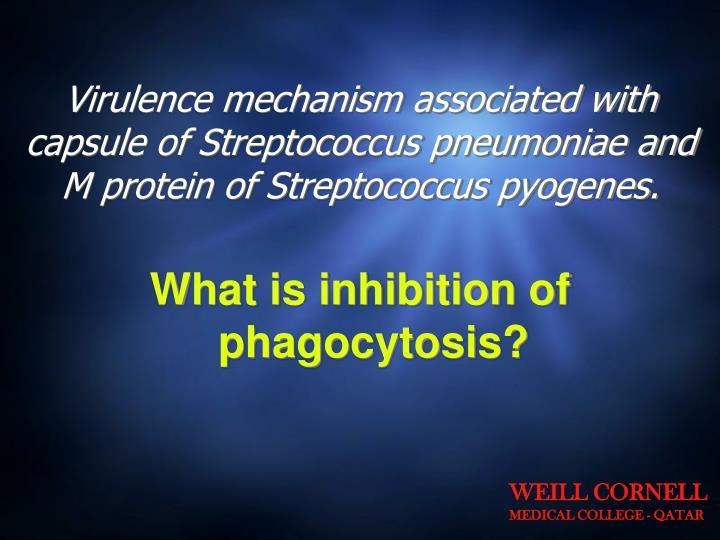 Virulence mechanism associated with capsule of Streptococcus pneumoniae and M protein of Streptococcus pyogenes.