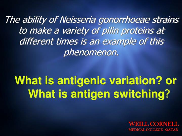 The ability of Neisseria gonorrhoeae strains to make a variety of pilin proteins at different times is an example of this phenomenon.