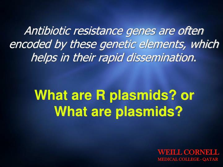 Antibiotic resistance genes are often encoded by these genetic elements, which helps in their rapid dissemination.