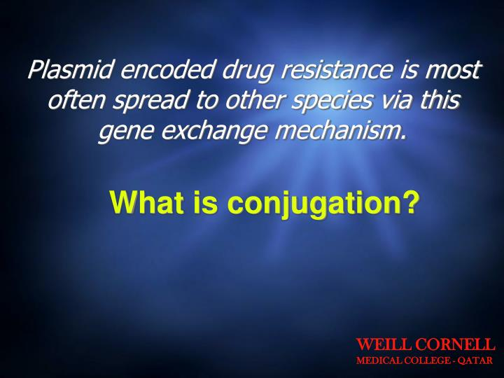 Plasmid encoded drug resistance is most often spread to other species via this gene exchange mechanism.