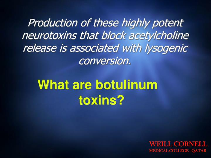 Production of these highly potent neurotoxins that block acetylcholine release is associated with lysogenic conversion.