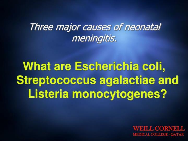 Three major causes of neonatal meningitis.