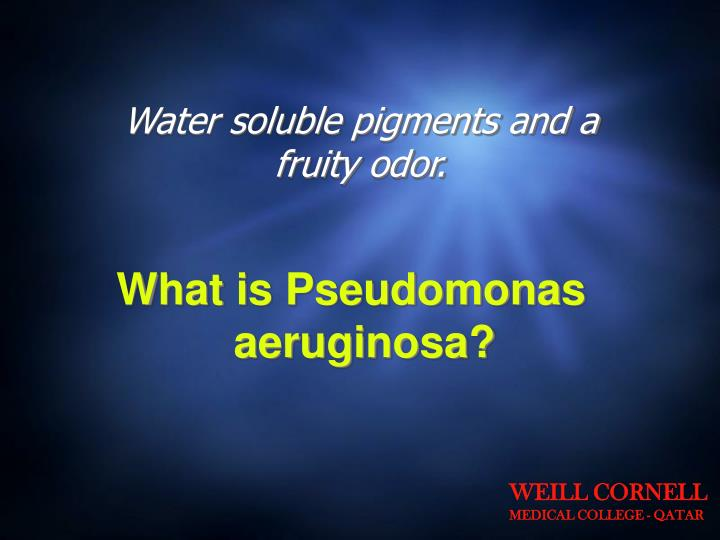 Water soluble pigments and a fruity odor.