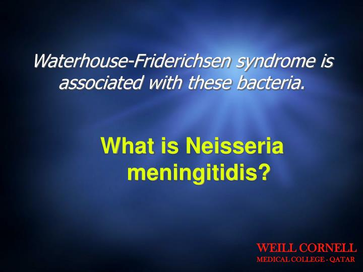 Waterhouse-Friderichsen syndrome is associated with these bacteria.
