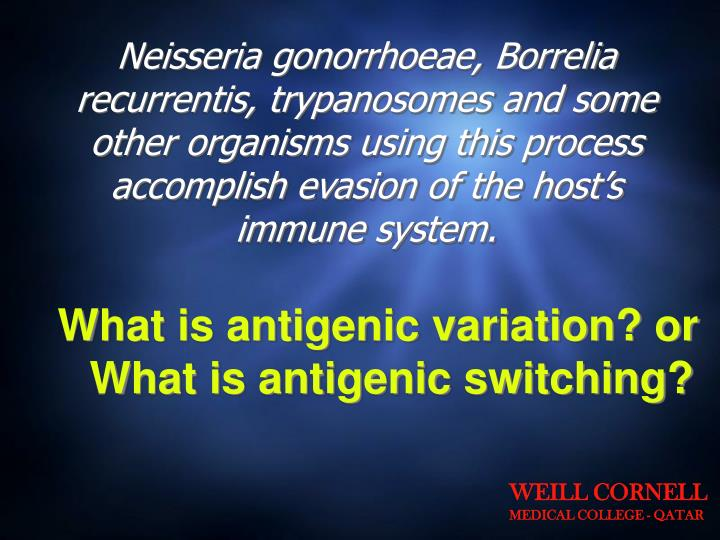 Neisseria gonorrhoeae, Borrelia recurrentis, trypanosomes and some other organisms using this process accomplish evasion of the host's immune system.