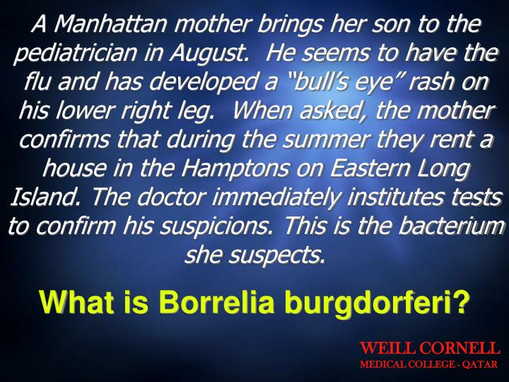 """A Manhattan mother brings her son to the pediatrician in August.  He seems to have the flu and has developed a """"bull's eye"""" rash on his lower right leg.  When asked, the mother confirms that during the summer they rent a house in the Hamptons on Eastern Long Island. The doctor immediately institutes tests to confirm his suspicions. This is the bacterium she suspects."""