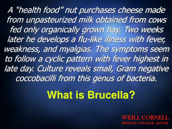 """A """"health food"""" nut purchases cheese made from unpasteurized milk obtained from cows fed only organically grown hay. Two weeks later he develops a flu-like illness with fever, weakness, and myalgias. The symptoms seem to follow a cyclic pattern with fever highest in late day. Culture reveals small, Gram negative coccobacilli from this genus of bacteria."""