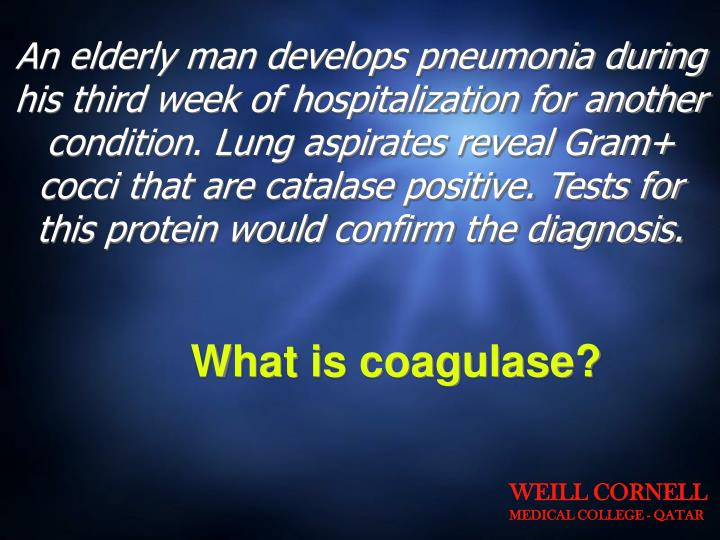 An elderly man develops pneumonia during his third week of hospitalization for another condition. Lung aspirates reveal Gram+ cocci that are catalase positive. Tests for this protein would confirm the diagnosis.