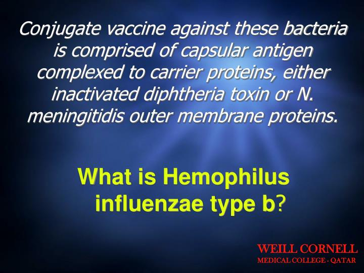 Conjugate vaccine against these bacteria is comprised of capsular antigen complexed to carrier proteins, either inactivated diphtheria toxin or N. meningitidis outer membrane proteins.