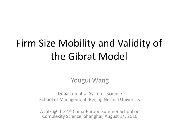 firm size mobility and validity of the gibrat model n.