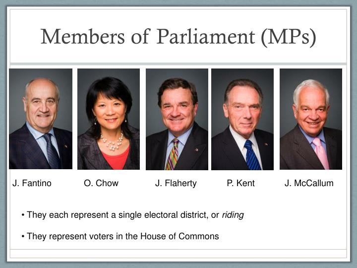 Members of Parliament (MPs)