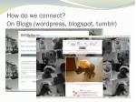 how do we connect on blogs wordpress blogspot tumblr