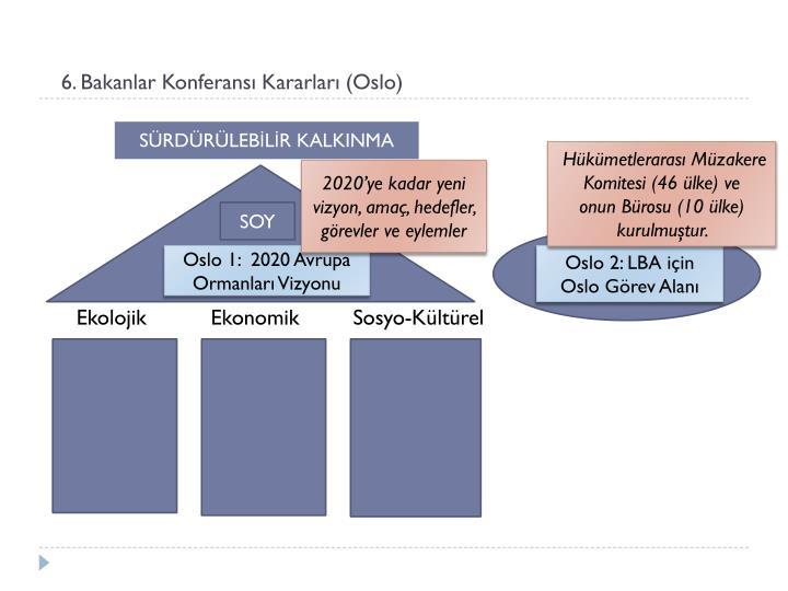 6. Bakanlar Konferansı Kararları (Oslo)