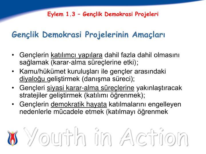 Eylem 1.3 – Gençlik Demokrasi Projeleri
