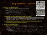 drug metabolism oxidation3
