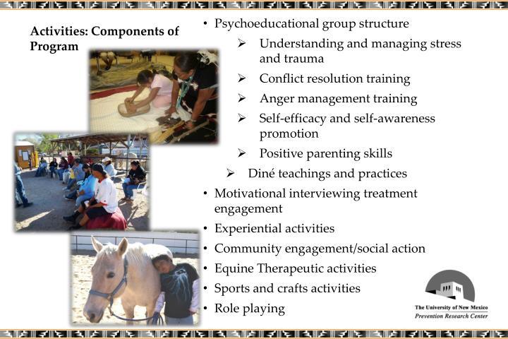 Activities: Components of Program