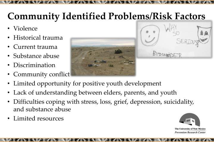 Community Identified Problems/Risk Factors