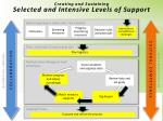 creating and sustaining selected and intensive levels of support2