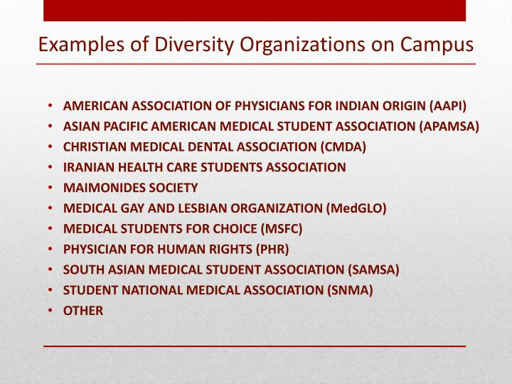 Examples of diversity organizations on campus