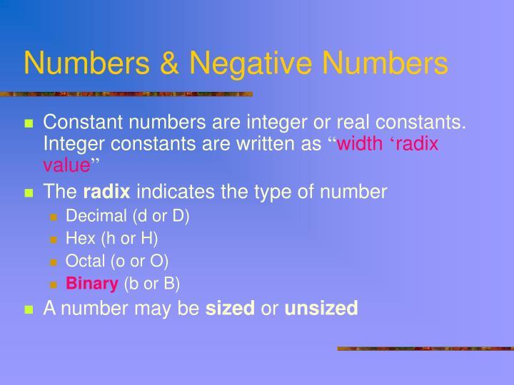 Numbers & Negative Numbers