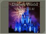 disney world march 2014