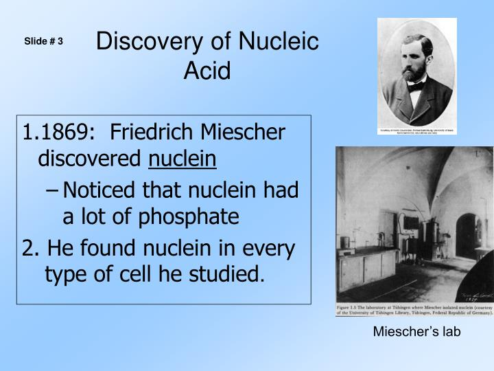 Discovery of nucleic acid