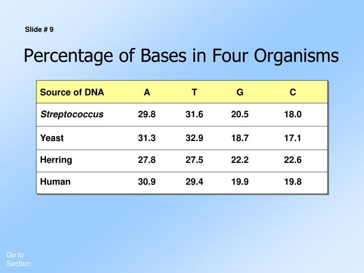 Percentage of Bases in Four Organisms