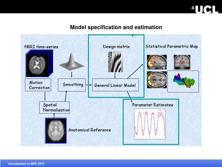 Model specification and estimation
