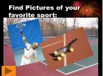 find pictures of your favorite sport