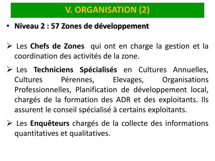 V. ORGANISATION