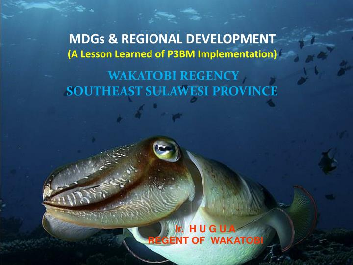 Mdgs regional development a lesson learned of p3bm implementation