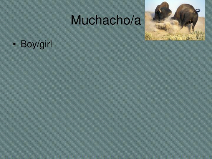 Muchacho/a