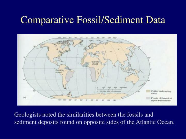 Comparative Fossil/Sediment Data
