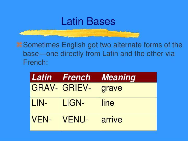 Latin Bases