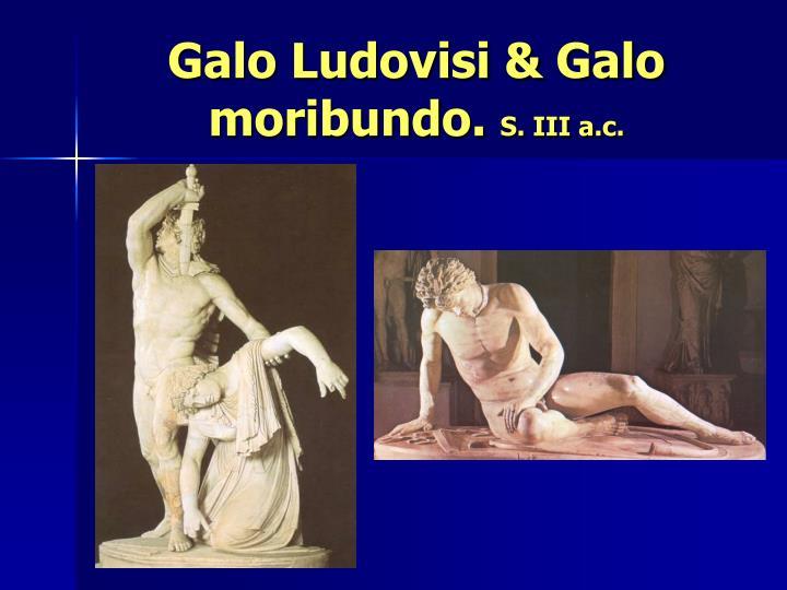Galo Ludovisi & Galo moribundo.