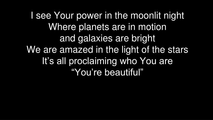 I see Your power in the moonlit night