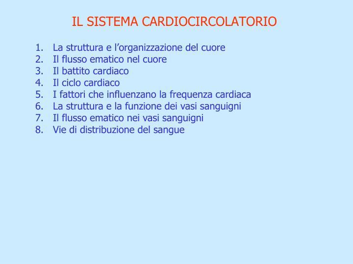I l sistema cardiocircolatorio