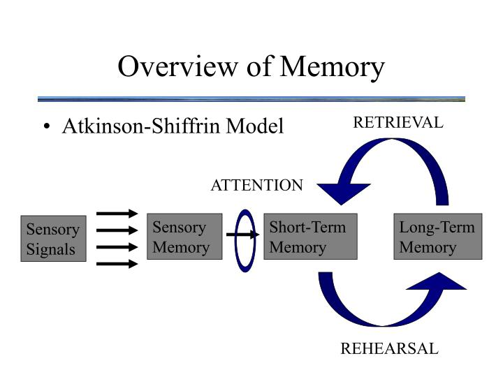Overview of memory