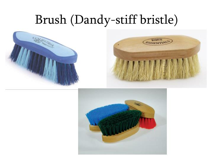 Brush (Dandy-stiff bristle)