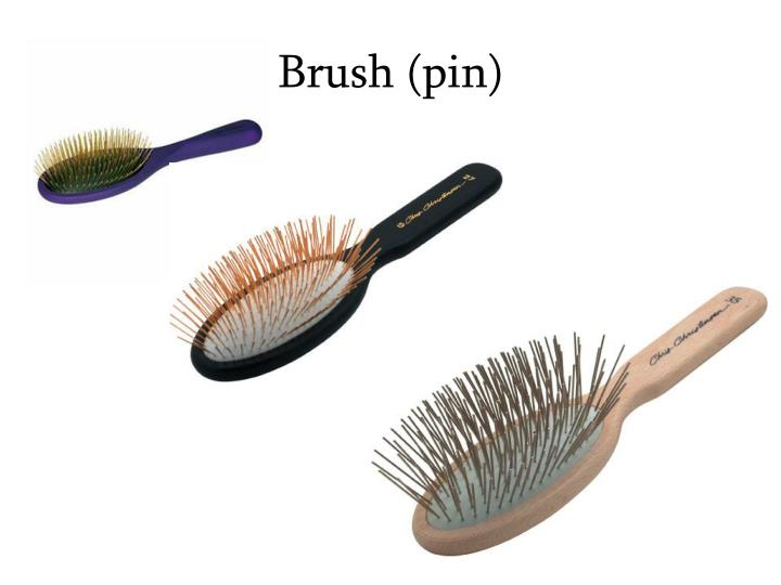 Brush (pin)