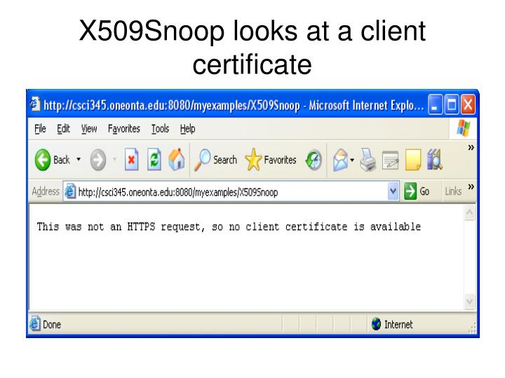 X509Snoop looks at a client certificate