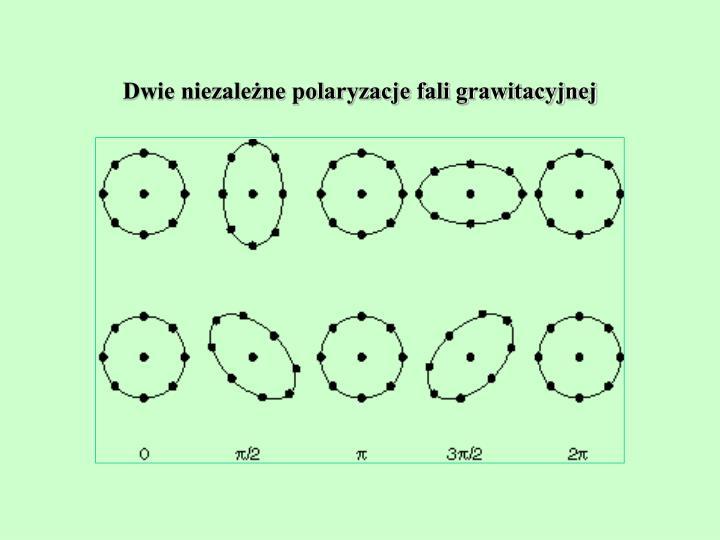 Dwie niezależne polaryzacje fali grawitacyjnej