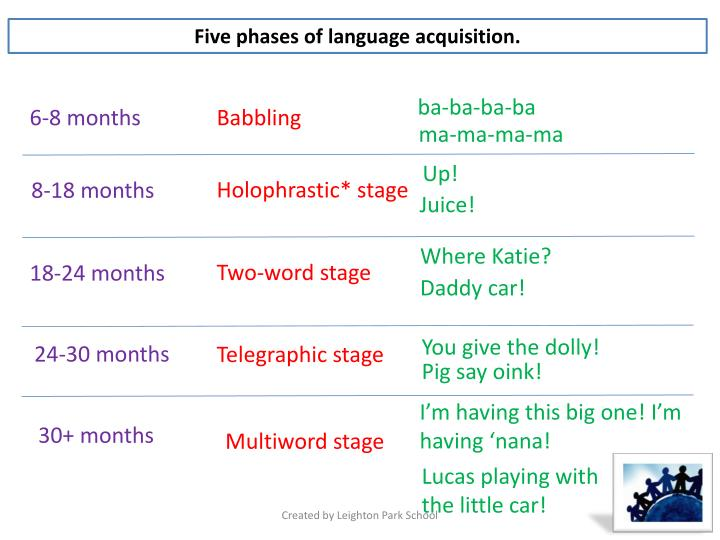 Five phases of language acquisition.