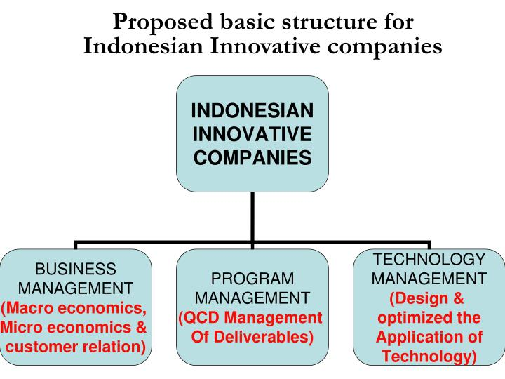 Proposed basic structure for Indonesian Innovative companies