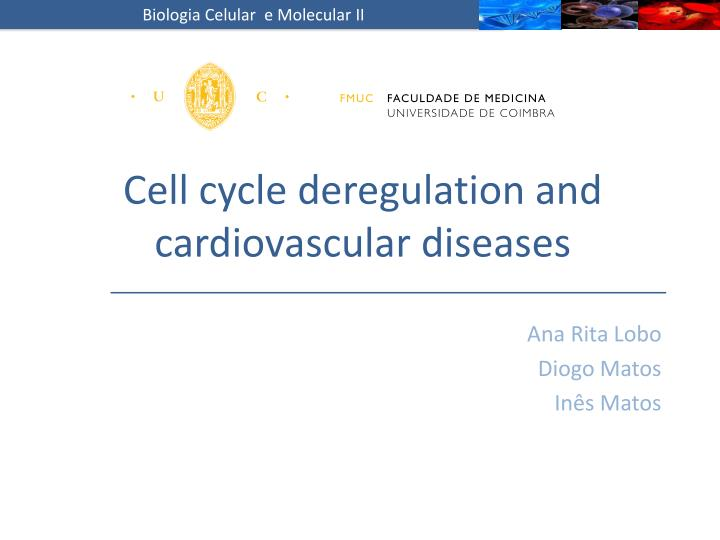 Cell cycle deregulation and cardiovascular diseases