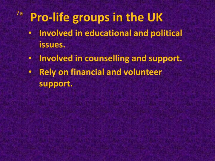 Pro-life groups in the UK